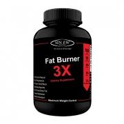 Sinew Nutrition Natural Fat Burner 3X (Green Tea, Green Coffee & Garcinia Cambogia Extract) – 700 mg (60 Veg Capsules)